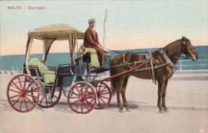 Malta Carrozin Horse and Carriage