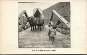 Hereford-Burnt River Oregon~Covered Wagon Bridge~Ezra Meeker's Dog Jim 1906