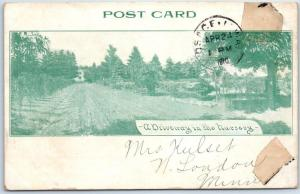 Osage, Iowa Postcard GARDNER NURSERY COMPANY Advertising Driveway View 1910