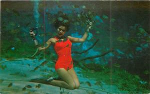 Amusement Sexy mermaid Weeki Wachee Florida 1950s Postcard 11310