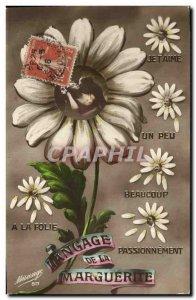 Old Postcard Fantasy Daisy Flowers Language