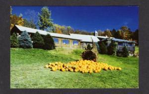 VT Morse Sugar Shack Farm MONTPELIER VERMONT POSTCARD