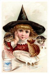 16044  NY Condensed  Milk Co. Young Girl, 3 cats drinking milk  Trade Card