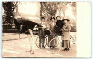 VTG Postcard Real Photo RPPC California Cawstons Ostrich Farm Family Cart B1
