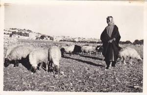 Bethlehem , Shepherd's Field , Palestine, 20-40s