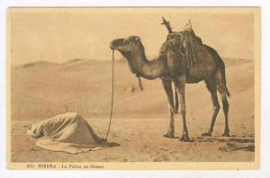 Man praying in desert next to camel, BISKRA, Algeria, 00-10s