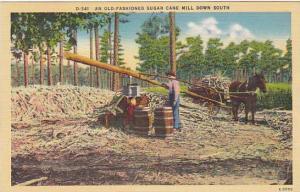 Old Fashioned Sugar Cane Mill Down South