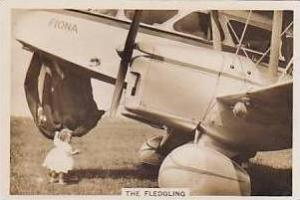 Pattreiouex Vintage Cigarette Card Flying 1938 No 27 The Fledgling
