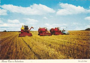 Harvest Time, Farming in Saskatchewan, Canada, 50-70's