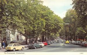 Vintage Postcard, The Promenade, Cheltenham, Gloucestershire L53