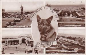 England Skegness Multi View  Real Photo