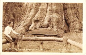 RPPC General Sherman Tree Base, Sequoia Natl Park, CA c1930s Vintage Postcard