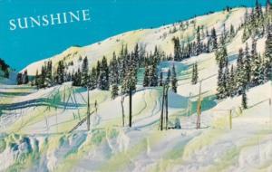 Canada Sunshine Village Ski Slopes Banff Alberta