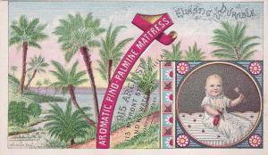 TC: Boston , Massachusetts , 1880s ; Aromatic Pino-Palmine Mattress