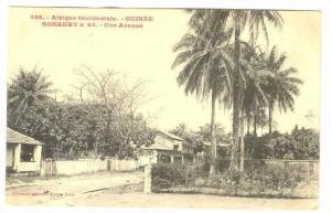 Afrique Occidentale- Guinee, Une Avenue, Konakry, Guinea, PU-1909