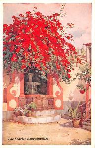 Spain Old Vintage Antique Post Card The Scarlet Bougainvillea Unused