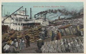 MEMPHIS , Tennessee, 1900-10s ; Levee Cotton Scene
