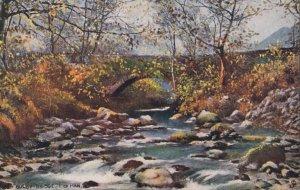 RAMSEY , I.O.M., 1905 ; Shelby Bridge , TUCK 1779