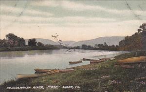Susquehanna River, Jersey Shore, Pennsylvania, 00-10s