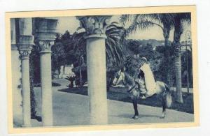 Palais d'Ete, Les jardins vus an travers de la Pergola, 1910-20s