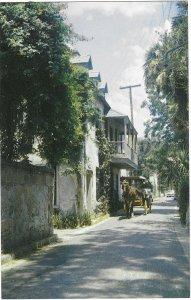Romantic Aviles Street &  Horse Drawn Surrey St Augustine Florida