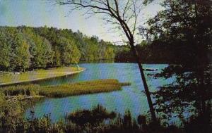 Arkansas Mena Shady Lake