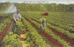 KALAMAZOO, Michigan, 30-40s ; Celery Field