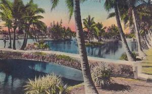 Hand-Colored, Palm Friged  Florida Canal, PU-1939