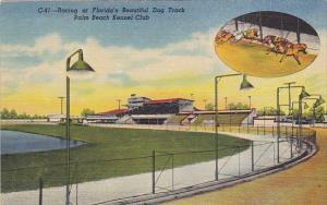 Florida Geryhound Racing At Beautiful Palm Beach Kennel Club Curteich