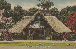 Miami , Florida , 30-40s ; Parrot Jungle