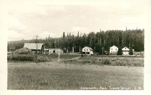 AK, Tanana Valley, Alaska, Experimental Farm, RPPC