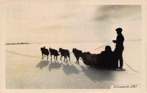 Canada Yellowknife N.W.T. Dogs Sleigh Postcard