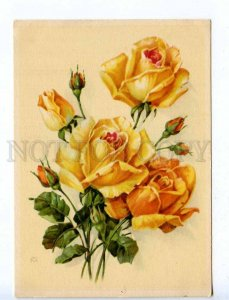 218845 GERMANY roses flower by WM old postcard