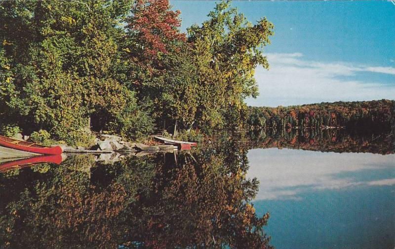 Scenic Waterfront View, Autumn Trees, Canoes, Greetings From Land o´ Lakes D...