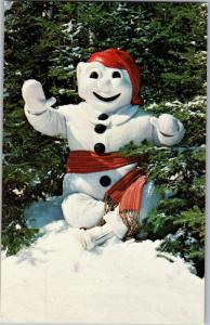 Le Bonhomme, King of Quebec Winter Carnival Vintage Postcard M22