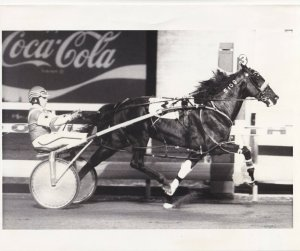 MEADOWLANDS, Harness Horse Race, T K'S SKIPPER (3) winner