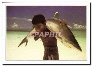 Postcard Modern Maldives Islands Maldives has white tip shark