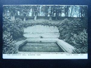 Oxfordshire Woodstock BLENHEIM PARK Fair Rosamund's Well Old Postcard by Taunt's