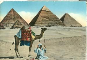 Egypt, Prayer near the Pyramids of Giza, 1957 used Postcard