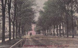 CONSTANTINE, Michigan, 00-10s ; Washington Street, looking North