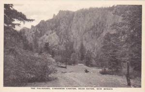 New Mexico Raton The Palisades Cimarron Canyon Albertype