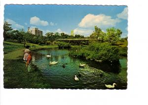 Children, Swans, Ducks and Bridge in Crescent Park, Moose Jaw, Saskatchewan, ...