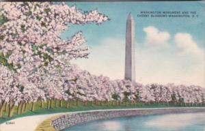 Washington D C Washington Monument and Cherry Blossoms 1954