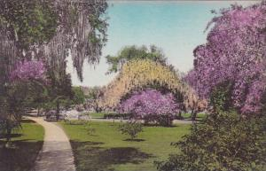 Florida Sebring Walk Through East Grounds Kenilworth Lodge Highland County Al...