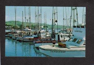 CA Boats The Tanqueray Harbor Harbour Sailboats Bodega Bay California Postcard