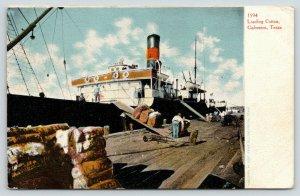 Galveston Texas~Workers Loading Cotton Onto Ship~c1910 Postcard