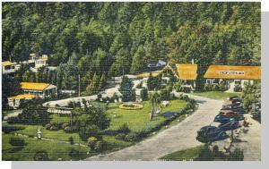 Wolfeboro, New Hampshire/NH Postcard, Allen A Camp/1951