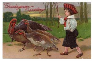 1908 Edwardian Boy Herding Turkeys Embossed Vintage PFB Thanksgiving Postcard