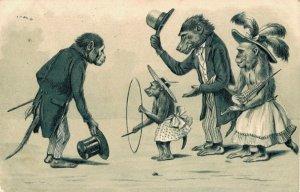 Dressed Anthropomorphic Monkeys Embossed Postcard 03.75