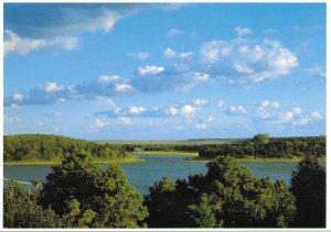 US Massachusetts. Salt Pond, Cape Cod. Mint Card.